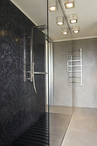 Modern bathroom with frameless shower screen